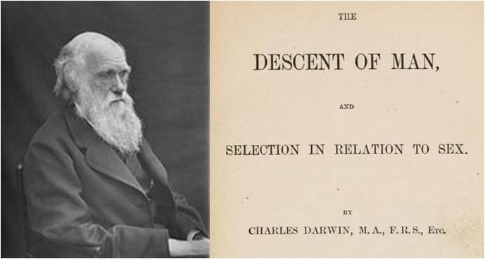 Image: The Descent of Man, and Selection in Relation to Sex by Charles Darwin